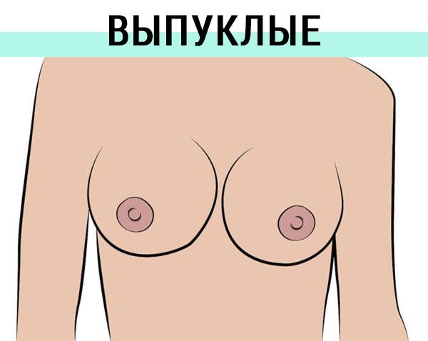 Женский сосок цвет размер