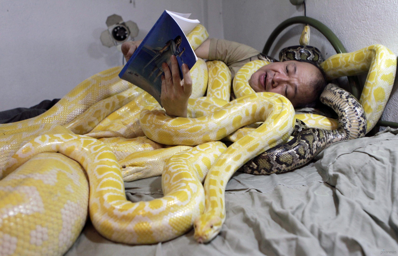 Японка со змеей 9 фотография